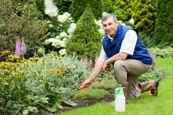 Садовник Скачать Через Торрент - фото 10